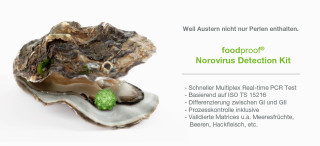 Neues Norovirus Detection Kit