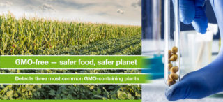 GMO-free — safer food, safer planet